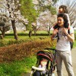 子供が桜が好きで2回もお花見に行きました(;^_^A